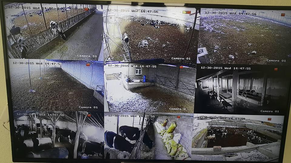 Emirgazi Guzin Yaylası Cuma Kara Beyin Çiftliği Haikon İp Kamera Sistemi